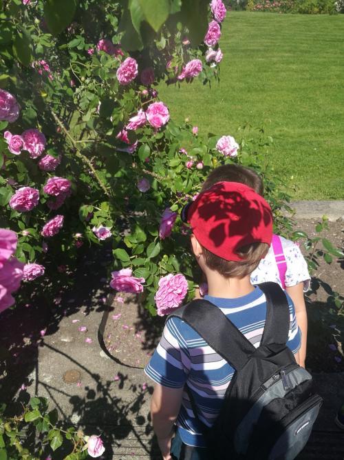 Květen a červen ve školce